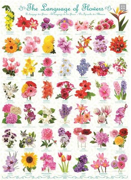 Пазл Язык цветов 1000 эл - 1