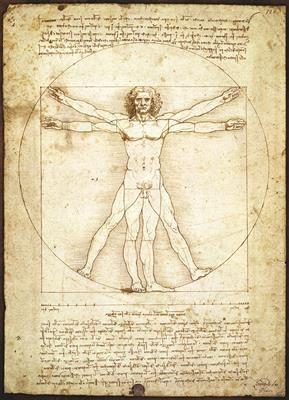 Пазл копия картины Витрувианский человек Леонардо да Винчи 1000 эл - 1